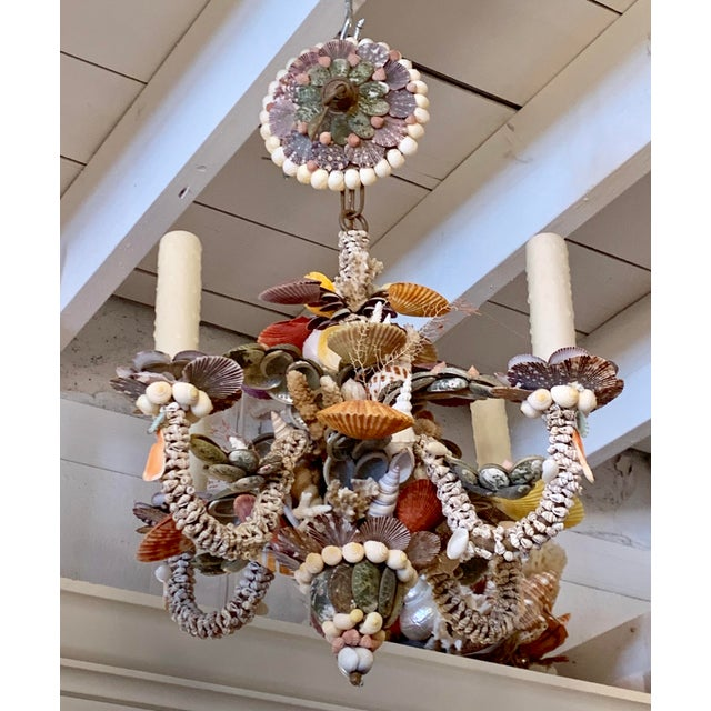 Tiny Rainbow Shell Chandelier For Sale - Image 9 of 9