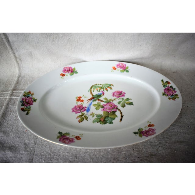 1930s 1930s Vintage Victoria China Parrot Platter For Sale - Image 5 of 7