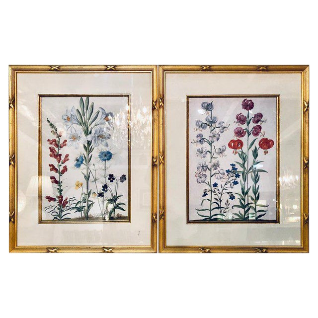 Pair of Botanicals Chelsea House Labels on Reverse. Fine Frames For Sale