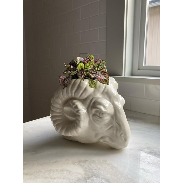 Vintage Rams Head Wall Planter For Sale - Image 9 of 10