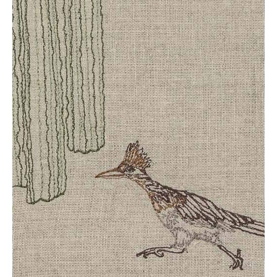 Run roadrunner! Dashing and sprinting but rarely flying, the roadrunner covers great distances. He loves to travel from...