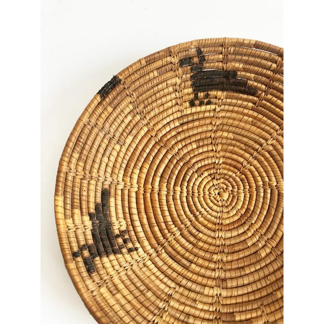 A vintage native american coil basket tray basket made of woven natural fiber. with a pattern of 3 birds. Quite possibly...