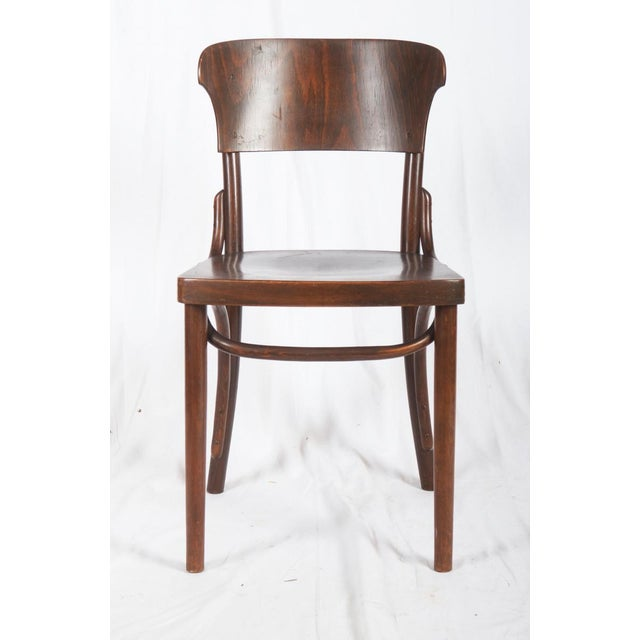Brown Bentwood Chairs by Thonet, 1930s - Set of 4 For Sale - Image 8 of 9
