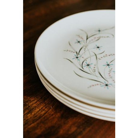 Mid-Century Modern 1960s Vintage Starburst Dinner Plates - Set of 4 For Sale - Image 3 of 7