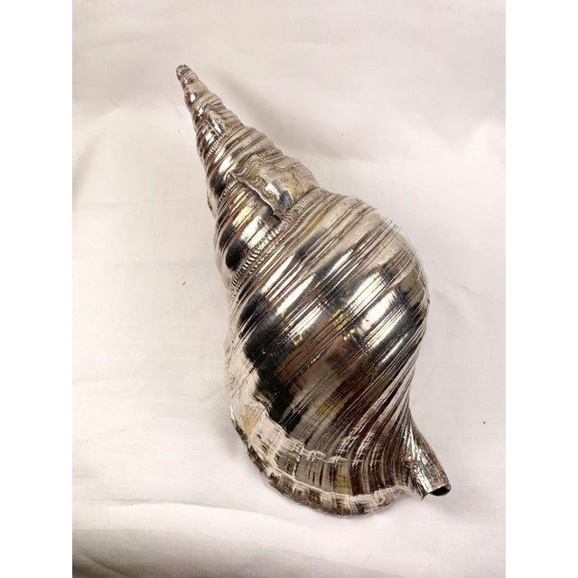 Mid 20th Century Mid 20th Century Sterling Silver Coated Conch Shell For Sale - Image 5 of 11