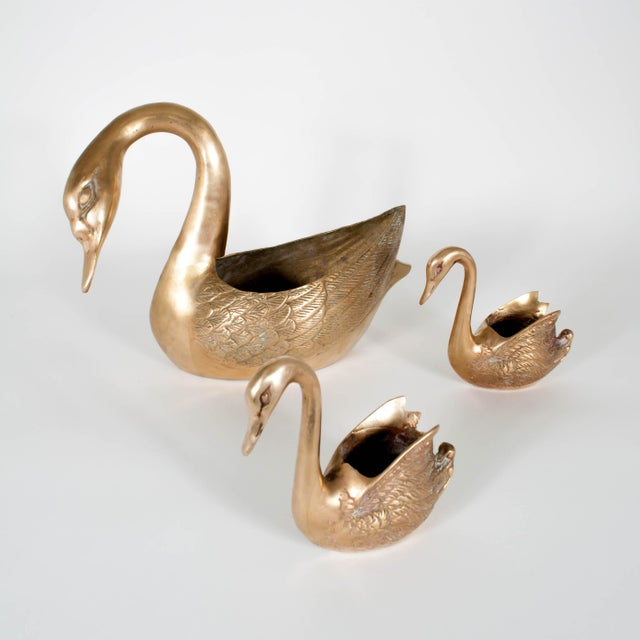 Vintage Brass Swan Planters - Set of Three For Sale - Image 12 of 12