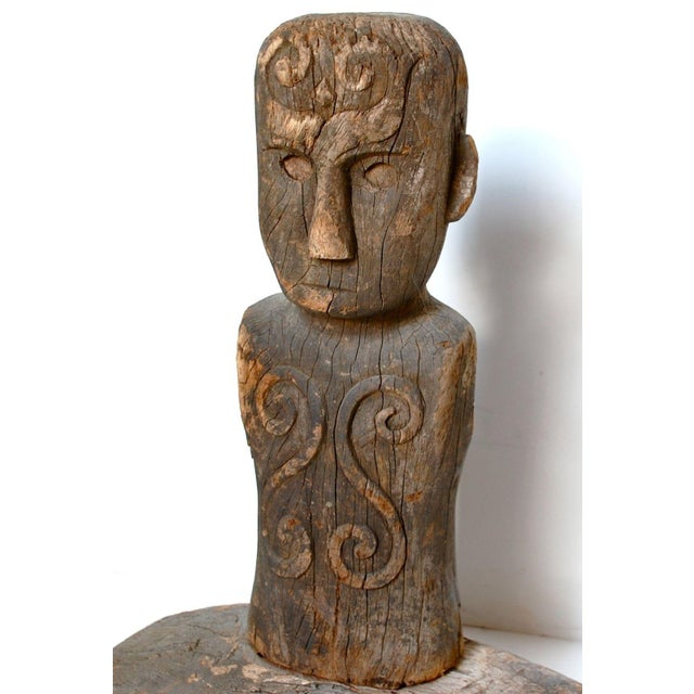 A powerful Toraja Tau Tau Bust figure with bulky torso in heavy wood. Representing an ancestor designed to ward off...