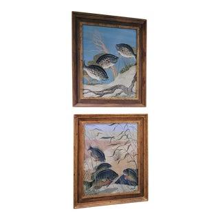 Fresh Stream Fish Watercolor Paintings - a Pair