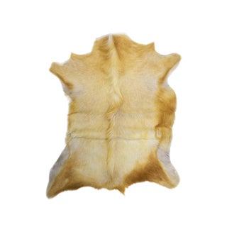 "Goat Skin Pelt Hand Tanned Genuine Leather Rug - 2'5"" x 3'0"""