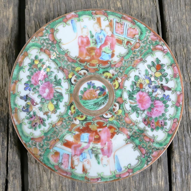 Antique Chinese Qing Rose Medallion Porcelain 6 Inch Plates Set of 4 For Sale - Image 10 of 13