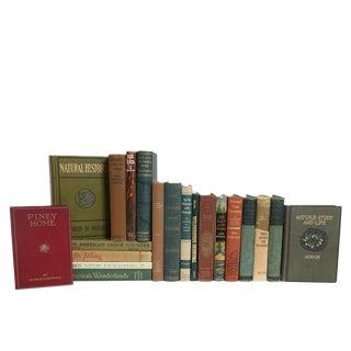 Vintage Wilderness Cabin Book Set S/20 For Sale