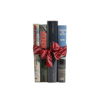 Vintage Decorative Book Gift Set: Adventures in the Sky - Set of 4