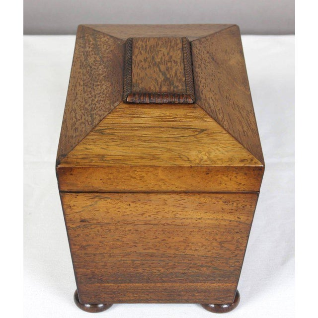Regency Mahogany Sarcophagus Form Tea Caddie For Sale In Richmond - Image 6 of 11