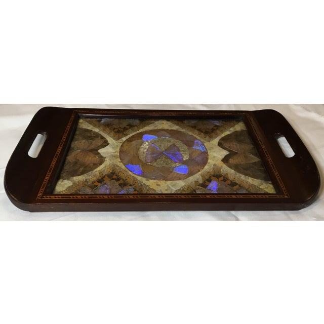 Glass Brazilian Butterfly Wood Tray For Sale - Image 7 of 13