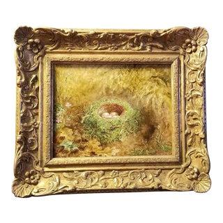1905 Bird Nest Oil on Canvas Painting by Albert Durer Lucas