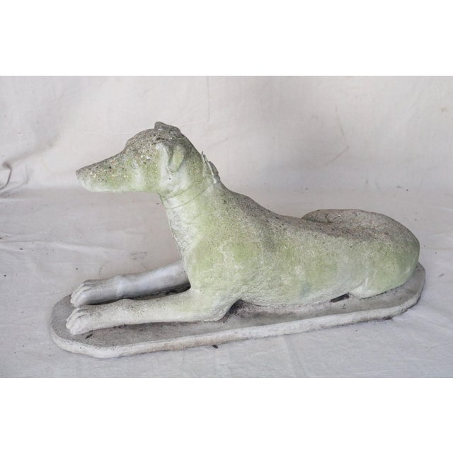 Early 20th Century Reclining Whippet English Cast Stone Garden Ornament For Sale - Image 4 of 8