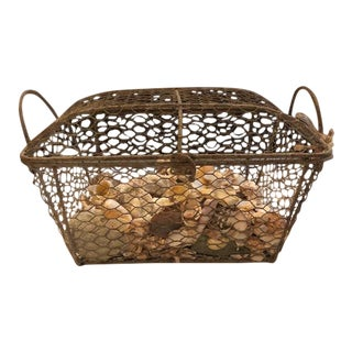 Cape Cod Wire Basket With Assorted Shells For Sale