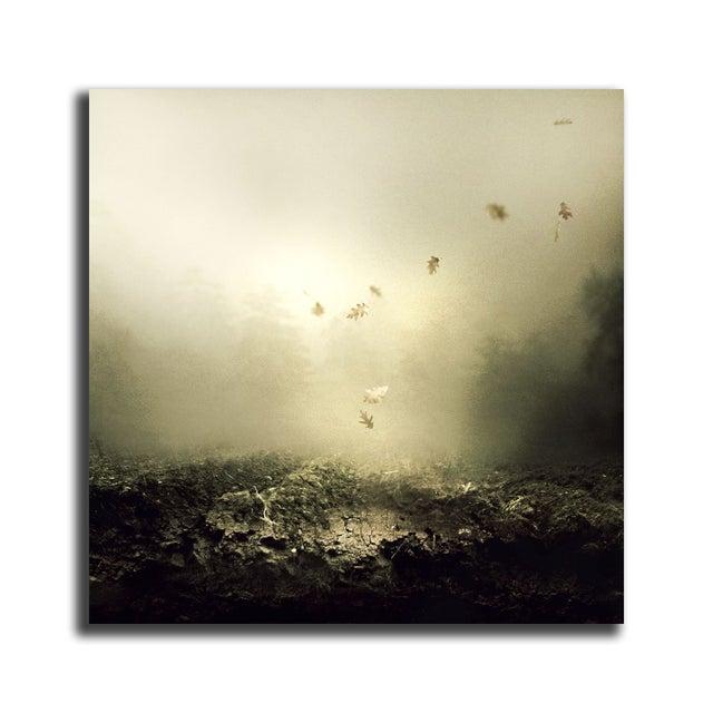 "Martin Stranka ""And I Keep Falling"" Floating Print - Image 2 of 2"