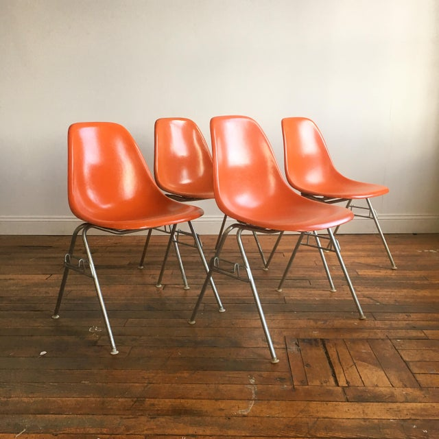 Orange Herman Miller Eames Fiberglass Shell Chairs - Set of 4 For Sale - Image 9 of 9