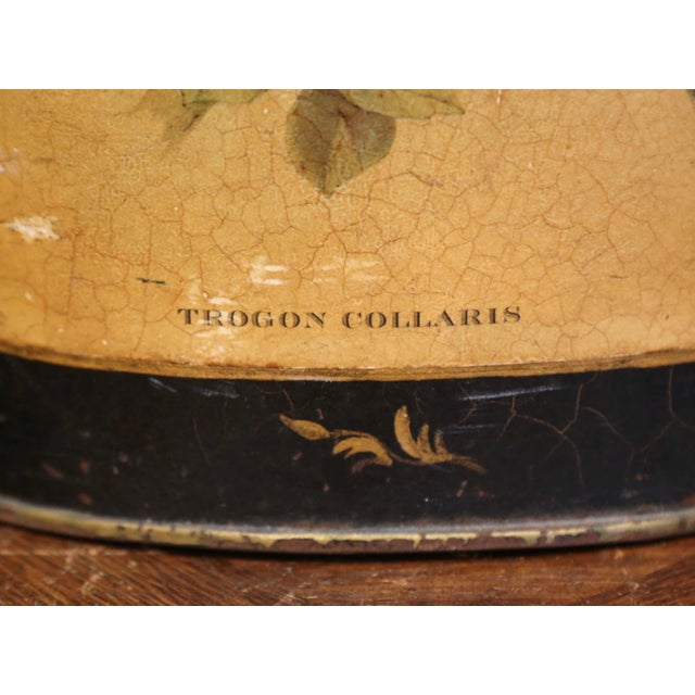 Mid-Century French Hand Painted and Gilt Tole Basket With Bird Decor For Sale - Image 4 of 12