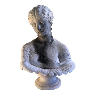 Nymph Clytie Plaster Bust For Sale