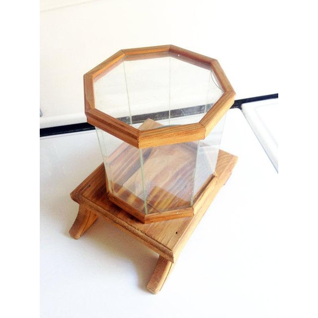 Wood and Glass Octagonal Terrarium - Image 2 of 5