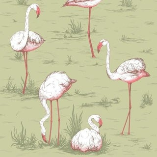 Cole & Son Flamingos Wallpaper Roll - Olive For Sale