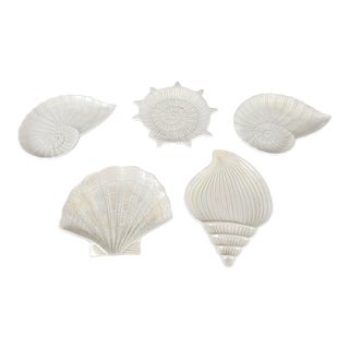 1970s Fitz and Floyd Shell Motif Plates - Set of 5 For Sale