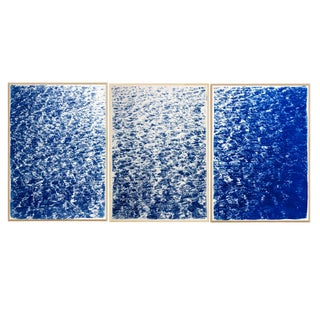 """Triptych """"The Cove"""" / Cyanotype Print on Watercolor Paper / Limited Edition / 100 X 210 CM For Sale"""