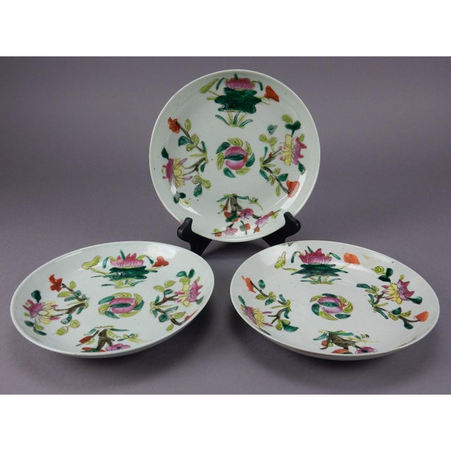 Antique Chinese Qing Dynasty Plates - Set of 3 - Image 5 of 11