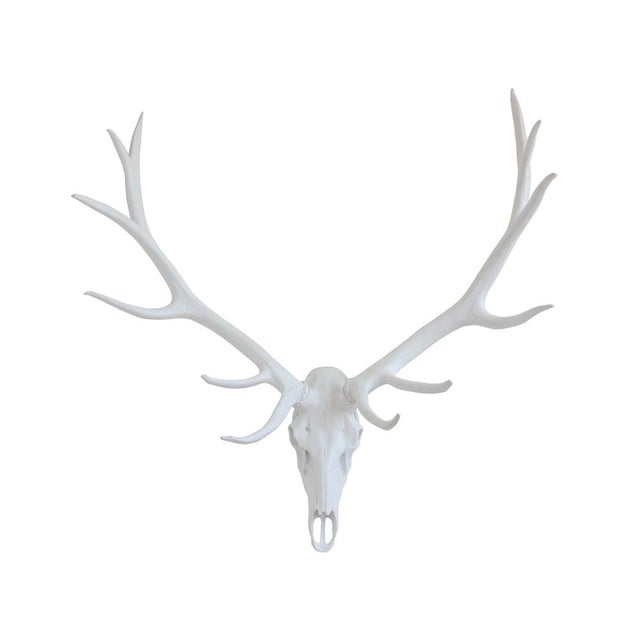 Resin Stag Skull Wall Decor, White For Sale In Los Angeles - Image 6 of 6