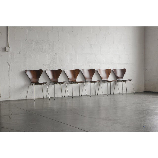 Set of Series 7 Arne Jacobsen Dining Chairs - Image 2 of 8