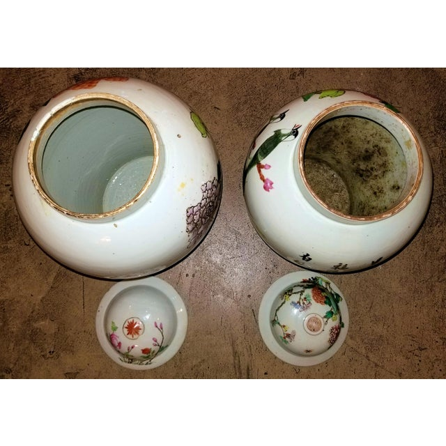 Qing Dynasty Lidded Ginger Jars - a Pair For Sale - Image 10 of 13