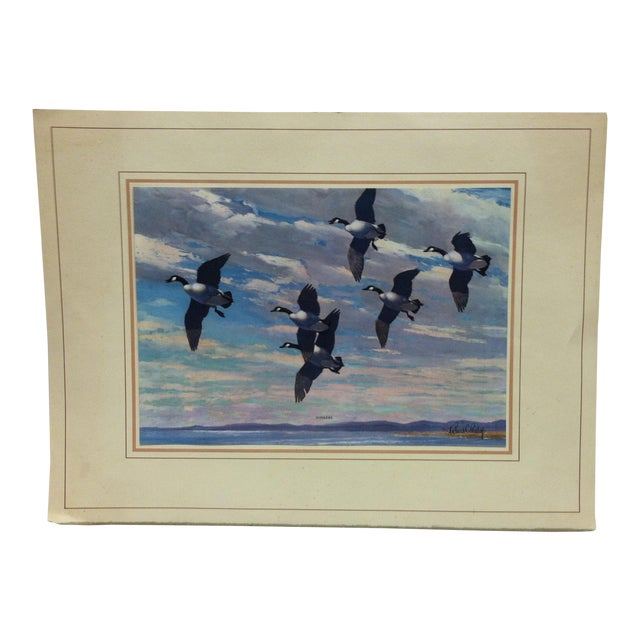 "Mounted ""Honkers"" Print by Richard Bishop For Sale"
