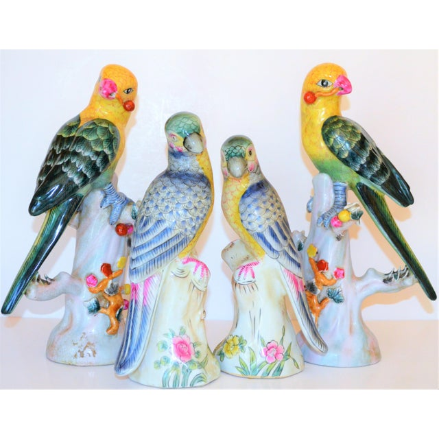 1980s (Final Mark Down Taken) Chinese Export Porcelain Parrot Figurines - Set of 4 For Sale - Image 5 of 12