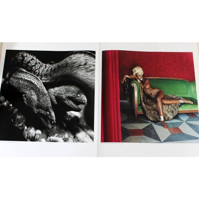 Art Nouveau Helmut Newton Sumo Big Nude Art Book on Starck Chrome Stand Signed 3114/10000 For Sale - Image 3 of 13