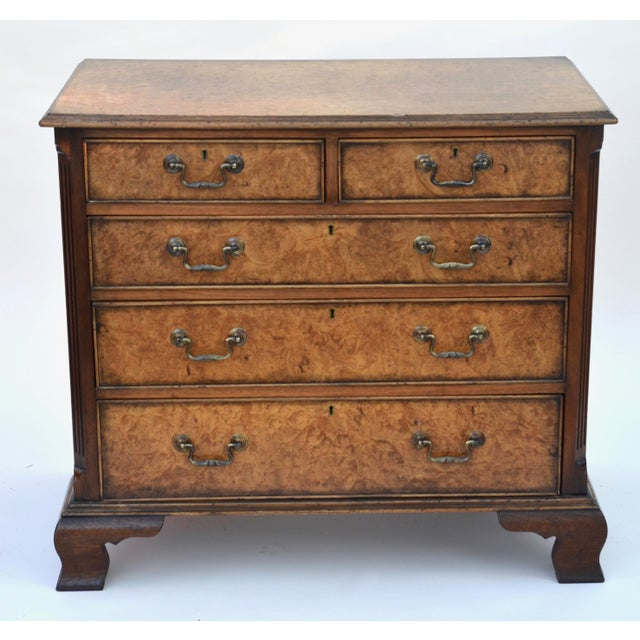 English English Georgian Style Walnut Burl Chest of Drawers For Sale - Image 3 of 11