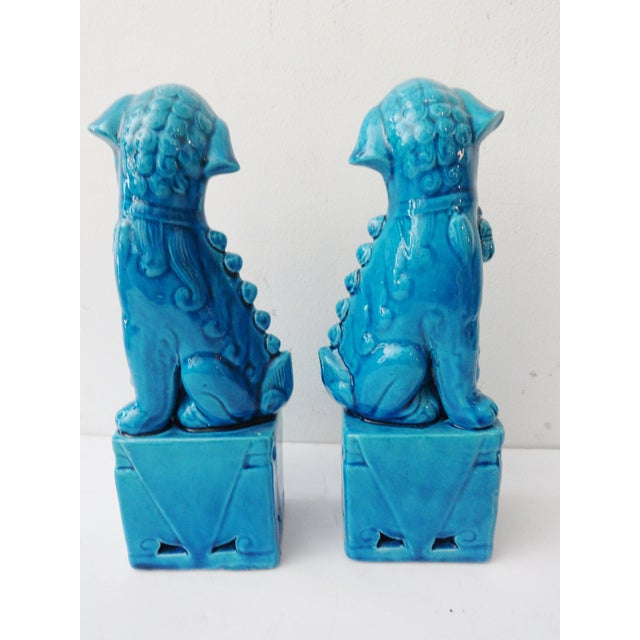 Turquoise Porcelain Foo Dogs - A Pair - Image 5 of 7