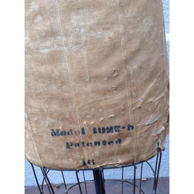 Antique Mannequin Dress Form /Palmenbergs - Image 3 of 7