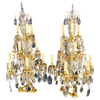 Pair of Large Louis XVI Style 12-Light Candelabrum Table Lamps Brass and Crystal For Sale