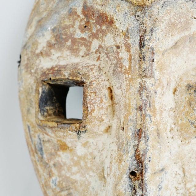African Kumu Mask Drc For Sale - Image 3 of 5