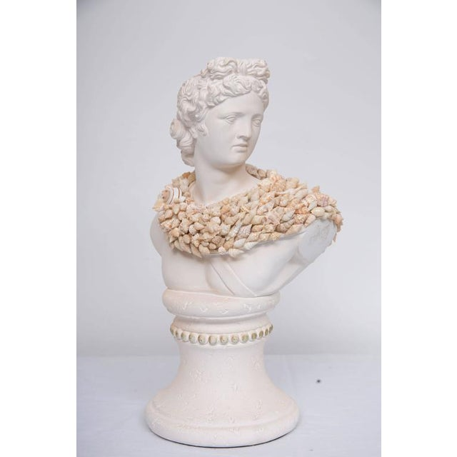 Neoclassical Shell Encrusted Composition Bust For Sale - Image 3 of 8
