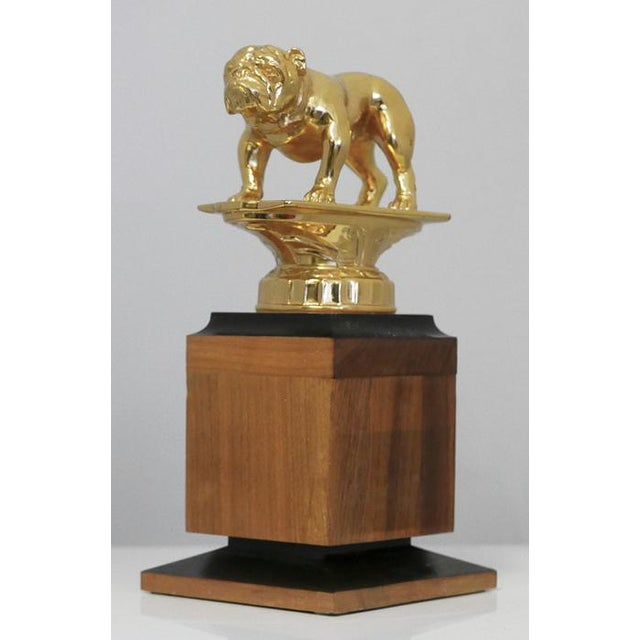 Brass bulldog trophy. Probably Vintage. Nice weight. There is no plaque which gives you the opportunity to have one made...