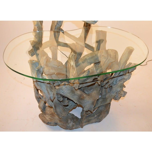 Mid-Century Modern Large Driftwood Lamp Table or Floor Lamp For Sale - Image 3 of 7