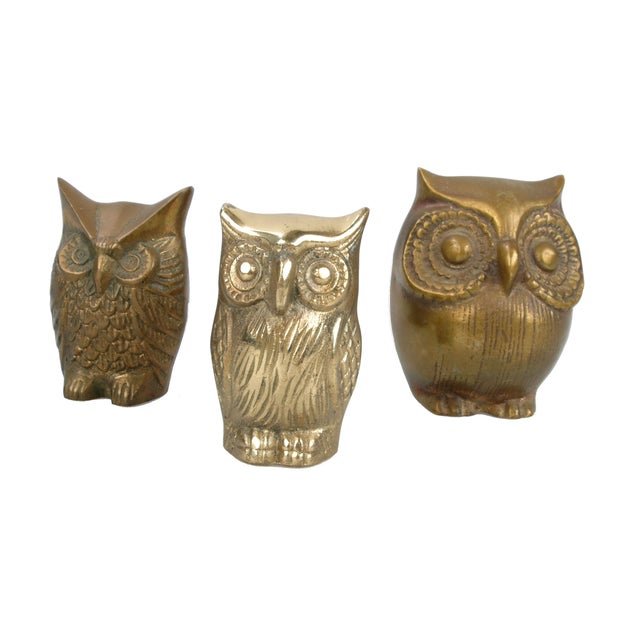 Brass Owl Figurines - Set of 3 - Image 6 of 6