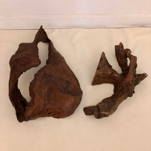1970s Redwood Naturally Formed Sculpture For Sale - Image 5 of 11