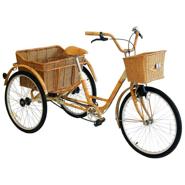 Wicker and Bamboo Tricycle For Sale - Image 12 of 12