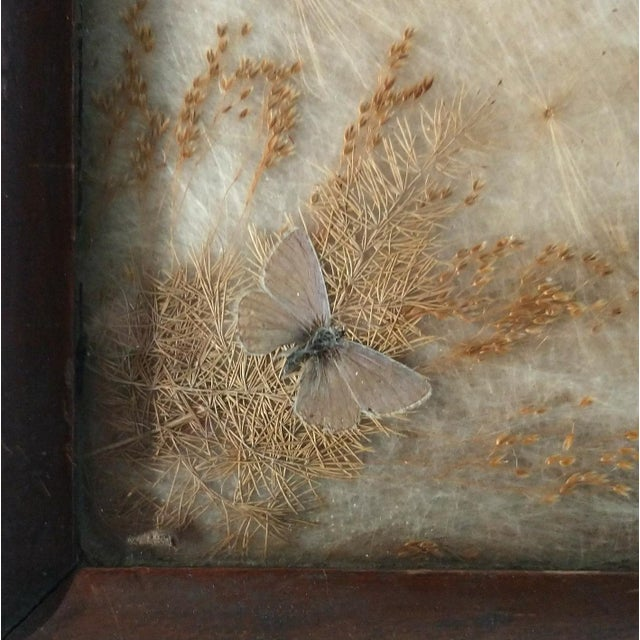 Antique Arts & Crafts Milkweed & Real Butterflies Serving Tray For Sale - Image 6 of 10