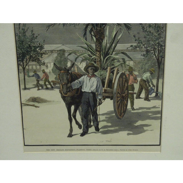 """Hollywood Regency Harper's Weekly """"The New Orleans Exposition, Planting Trees"""" Print by T. De Thulsrump For Sale - Image 3 of 5"""