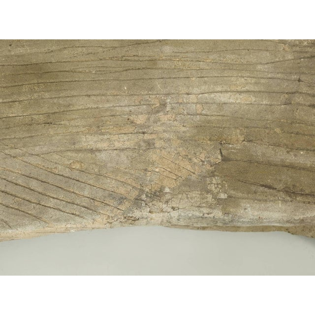 Antique French Faux Bois or Concrete Bench Attributed to Edouard Redont For Sale - Image 4 of 10